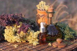 curso-de-experto-en-plantas-medicinales