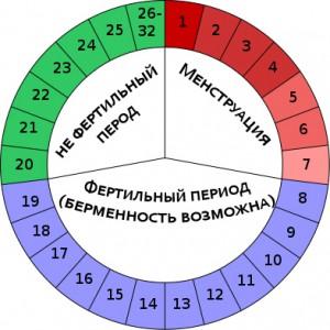 kalendar-cilka