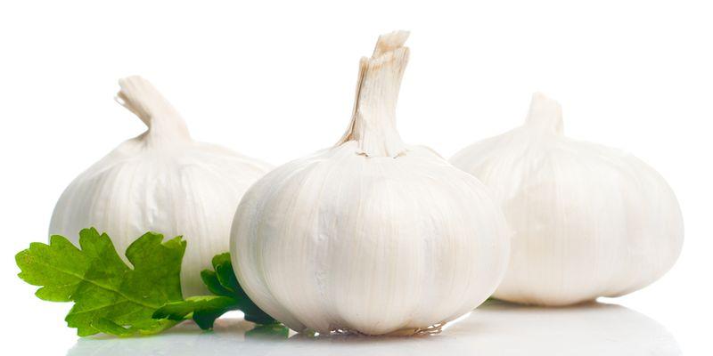 Fresh garlic isolated on white