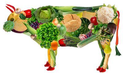 vegetariastvo