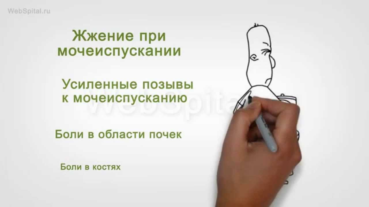 1503802438_maxresdefault.jpg