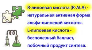 alpha-lipoevaya-kislota-syn