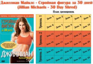 planjilian-768x533