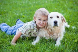 дети-и-собаки-3