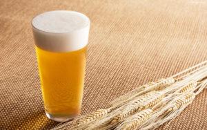 beloe-pivo